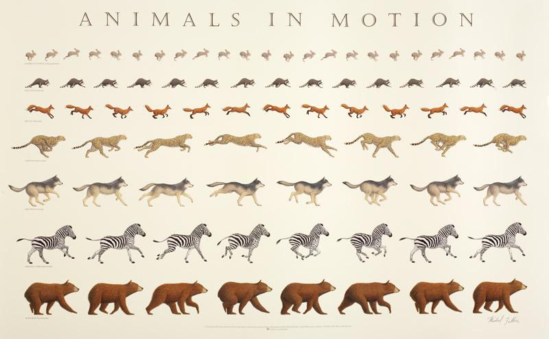 114. On the Gait of Animals (De Incessu Animalium), and, On the Motion of Animals (De Motu Animalium) by Aristotle (c.350BC)
